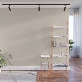 Light Beige - Pastel Tan - Taupe - Soft Brown Solid Color Parable to Valspar Manila Cream 3001-8C Wall Mural
