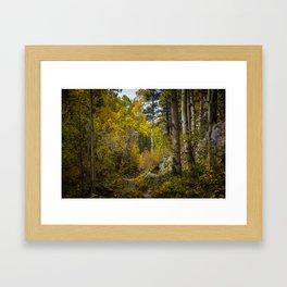 Fall, Sangre de Christo Mountains Framed Art Print