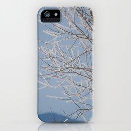 Red Shoulder Hawk iPhone Case