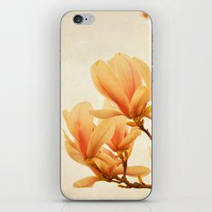 magnolia morning iPhone & iPod Skin