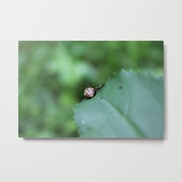 Backwards Beetle Metal Print