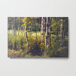 Whispers of Gold Metal Print