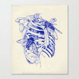 collarbone blue Canvas Print