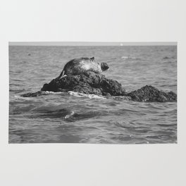 Mr. Happy Sea Lion Number 1: Sassy On A Rock In Black And White Rug
