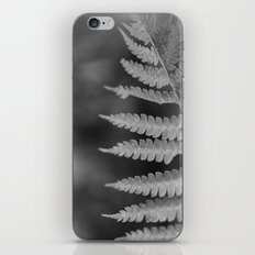 Fern 2 iPhone & iPod Skin