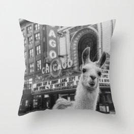 Chicago Llama Throw Pillow