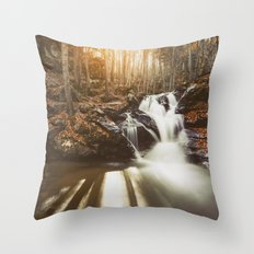 Autumn waterfall II Throw Pillow