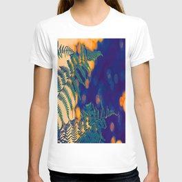 Farn im Abendlicht T-shirt