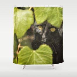 Brita's Cat Shower Curtain