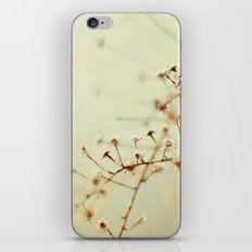 Winter Weeds iPhone & iPod Skin