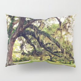 Live Oak Tree with Spanish Moss Pillow Sham