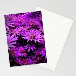 Colorado Marijuana LED Grow Lights Stationery Cards