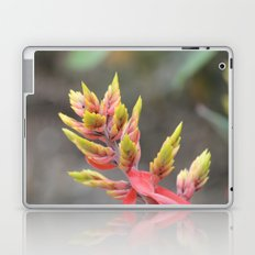 Tropical Plant Laptop & iPad Skin