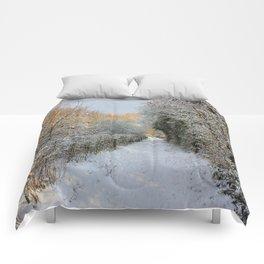 Winter Walkway Comforters