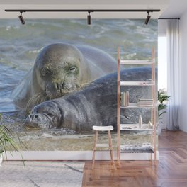 Mama Monk Seal and Pup at the Shoreline, No. 2 - RB00 and PK1 Wall Mural