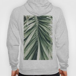 Natural Background 79 Hoody