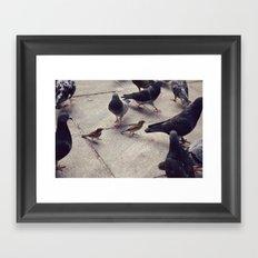 I envy birds Framed Art Print