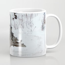 Stumpy and the Rock Wall in Winter White Coffee Mug
