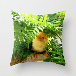 Chicklet Throw Pillow