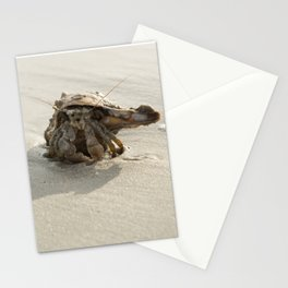 The sociable hermit (crab) Stationery Cards