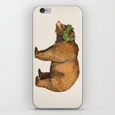 BROWN BEAR iPhone & iPod Skin