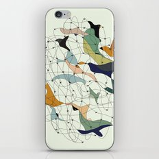 Chained birds iPhone & iPod Skin