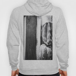 cactus with wood wall background in black and white Hoody