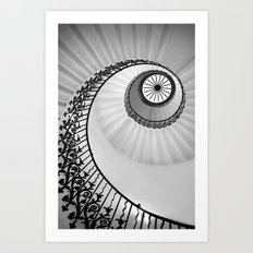 Ammonite Art Print