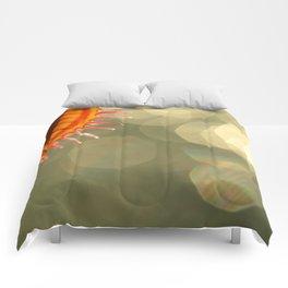 Flytrap As The Sun... Comforters