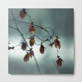 Frost & beauty III Metal Print