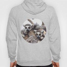 Lemur catta animals Hoody