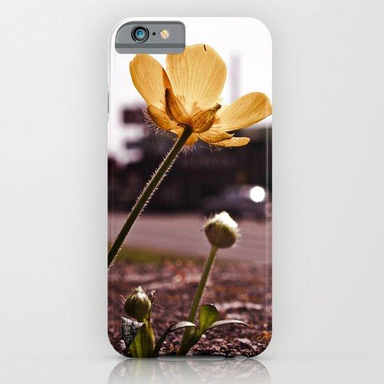 Urban buttercup iPhone & iPod Case