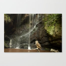 Eagle Owl and Waterfall. Canvas Print