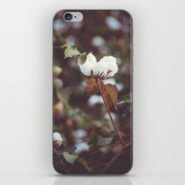 Cotton Flower 2 iPhone Skin
