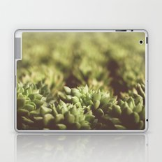 Succulent III Laptop & iPad Skin