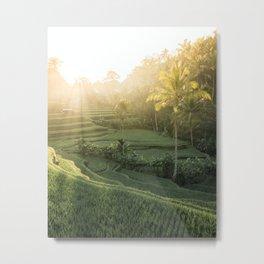 Morning Sun in Bali Metal Print