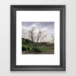 Vue Pointe II Framed Art Print