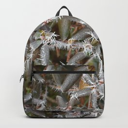 Frosted Stars Backpack