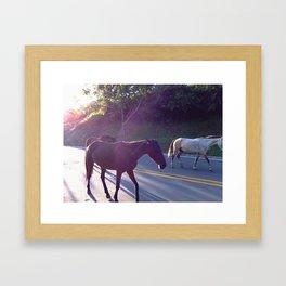 Wild Horses. Framed Art Print