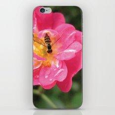 Flower Bee iPhone & iPod Skin