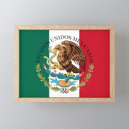Mexican flag augmented scale with Coat of Arms Framed Mini Art Print