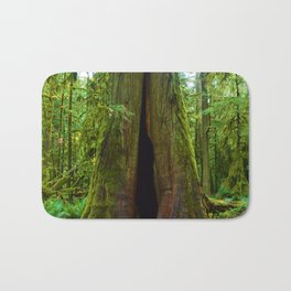 Cathedral Grove on Vancouver Island, BC Bath Mat
