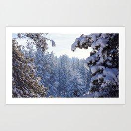 Winter Wonderland - Awbrey Meadow in Central Oregon Art Print