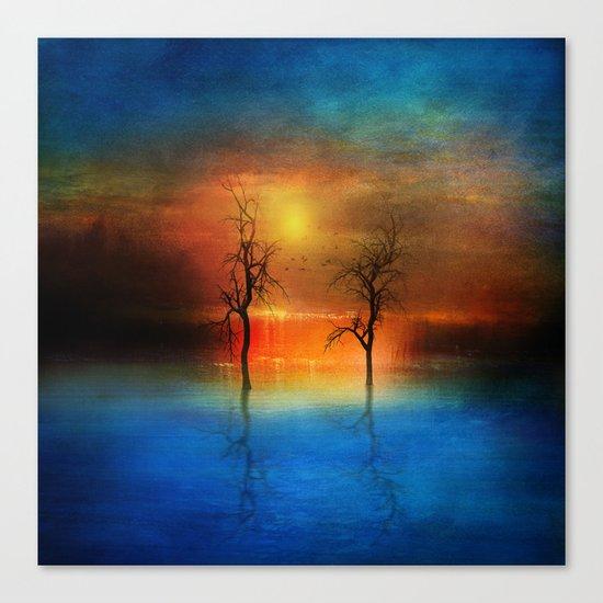 waterfall of light Canvas Print