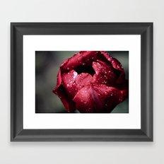 Tulip Close Framed Art Print