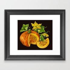 Pumpkin Framed Art Print