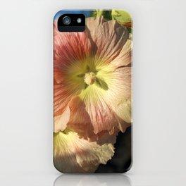 Hollyhocks iPhone Case