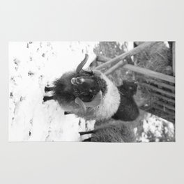 Alpine sheep, black and white photography Rug