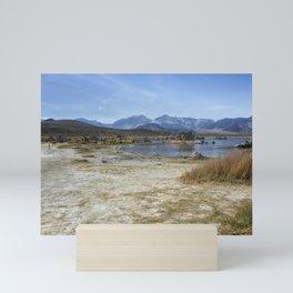 Mono Lake Tufa, No. 4 Mini Art Print
