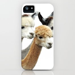Alpaca Trio iPhone Case
